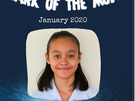 January 2020 - Shark of the Month