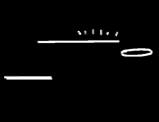 elementos-cuerpo-texto-alejo.png