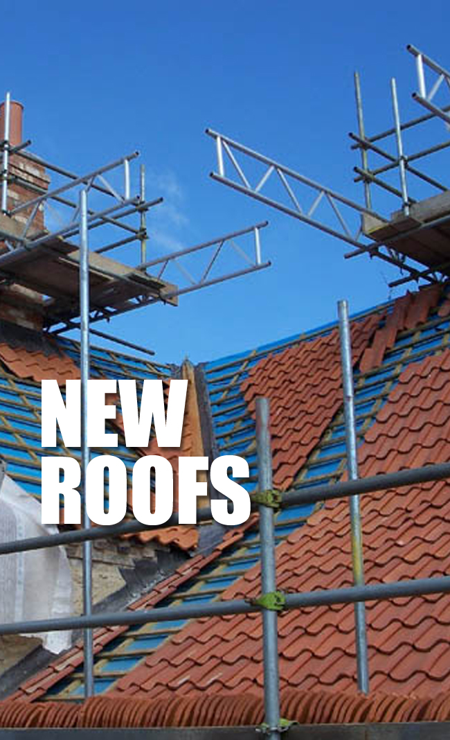 NEW ROOFS.jpg