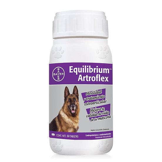 Equilibrium Artroflex