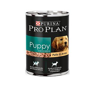 Pro Plan Puppy Pollo & Arroz