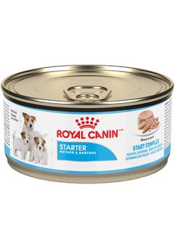 Royal Canin Starter Mousse lata