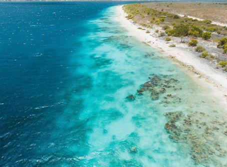 Top 5 Places to Visit While in Bonaire