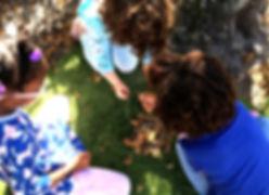Leaf Pile_edited.jpg
