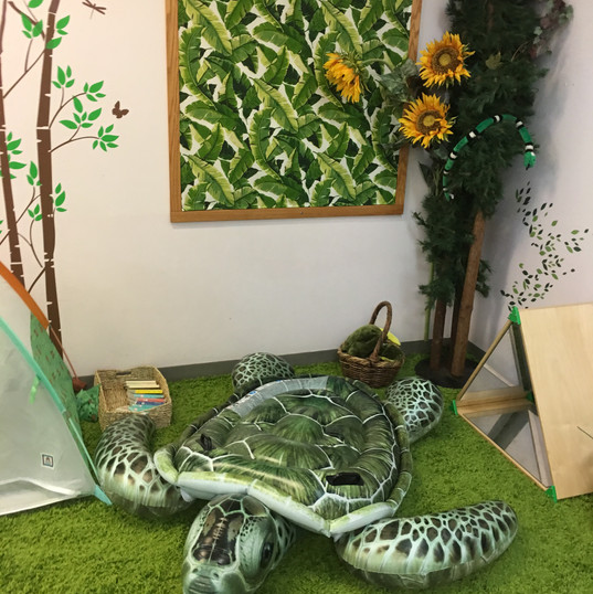 Turtle in the Gimel Room