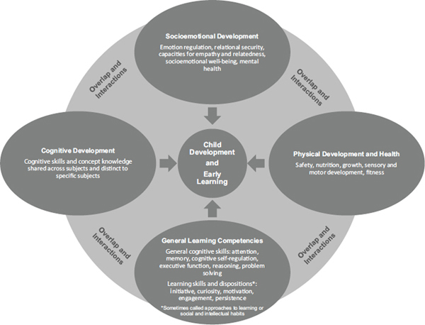 interdependant brain development.png