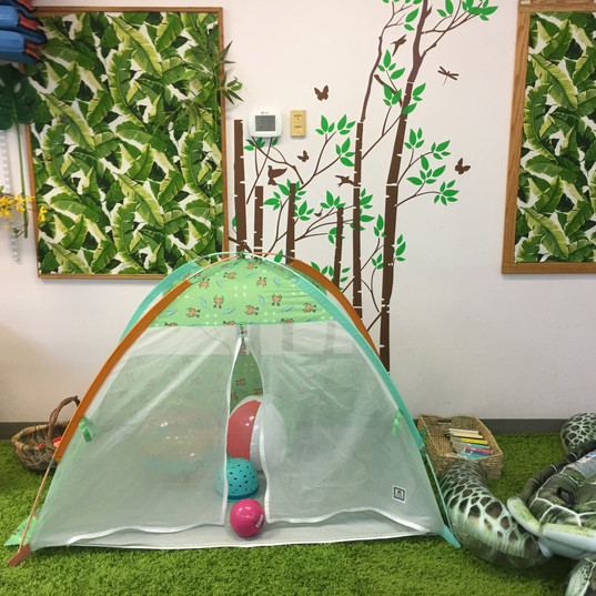 Tent in the OUT