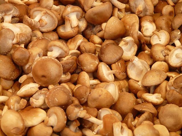 Shitake mushrooms