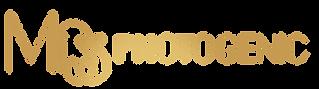 logo no background -2 copy.png