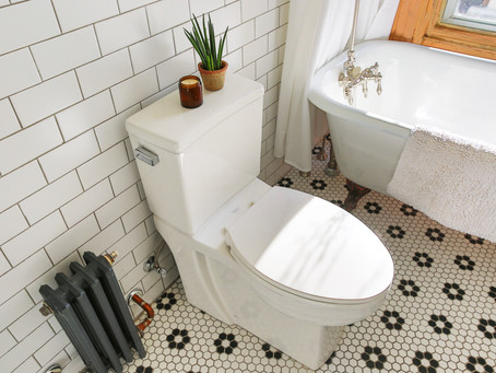 Pros and Cons of Wall Mounted Toilets