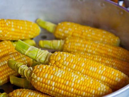 Getreide #5 – der erdverbundene Mais