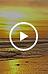 Capture d'écran 2021-06-19 à 14.44.18.png