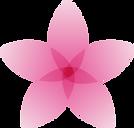 פרחAsset 2.png