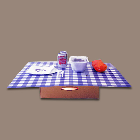 Caixa Pícnic