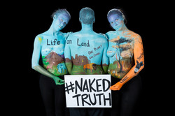 Life On Land - Naked Truth