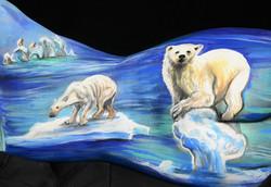 Plight of the Polar Bears_zoom 2