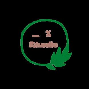 % RÉUSSITE.png