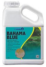 Bahama Blue Gal.jpg