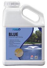 Blue Gal.jpg
