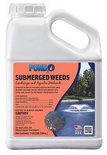 Submerged Weeds Gal.jpg