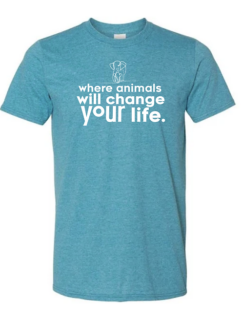 Where Animals Will Change Your Life