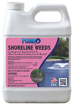 Shoreline Weeds Qt.jpg