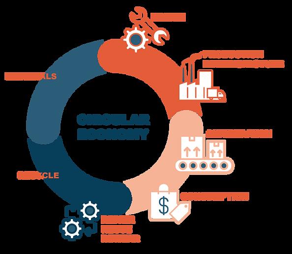 circular-website.png