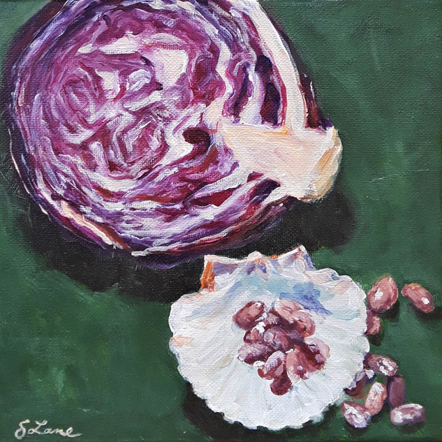 Red Cabbage, Shells and Beans