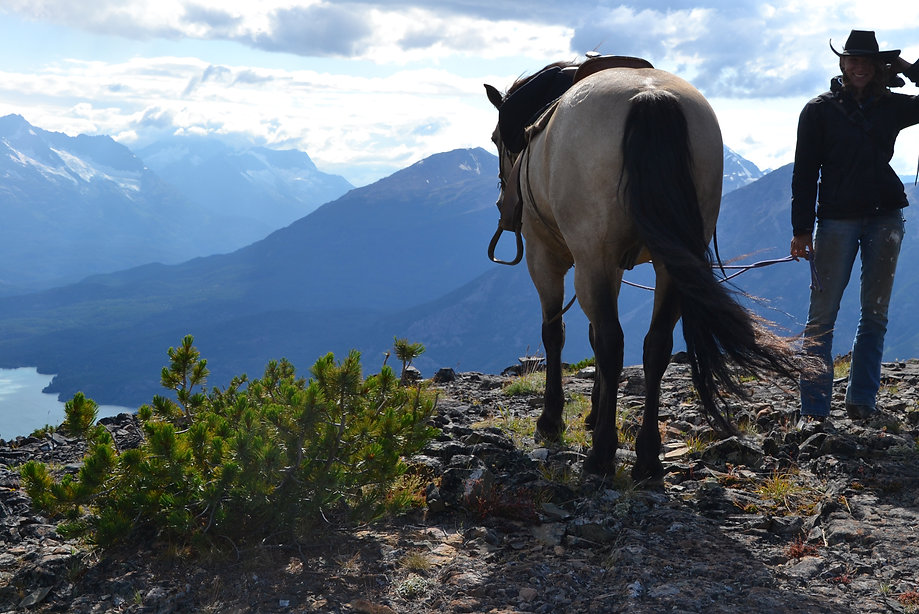 mountain horse and cowgirl.jpg
