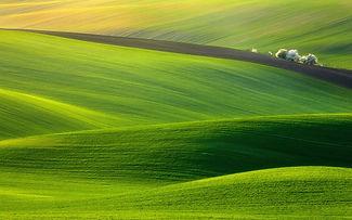 wp3071226-green-field-wallpapers.jpg