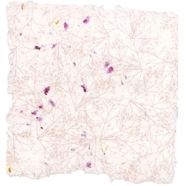Gypsophila Screen Print