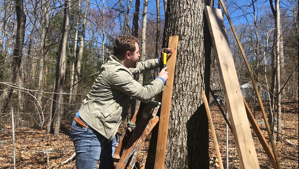 Michael Butler building a treehouse - Forgotten Cinema Podcast