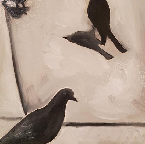 Birds vertical