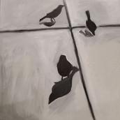 Birds-D