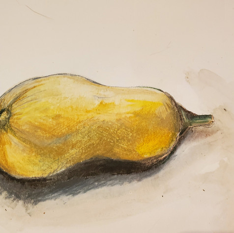 Butternut Squash drawing
