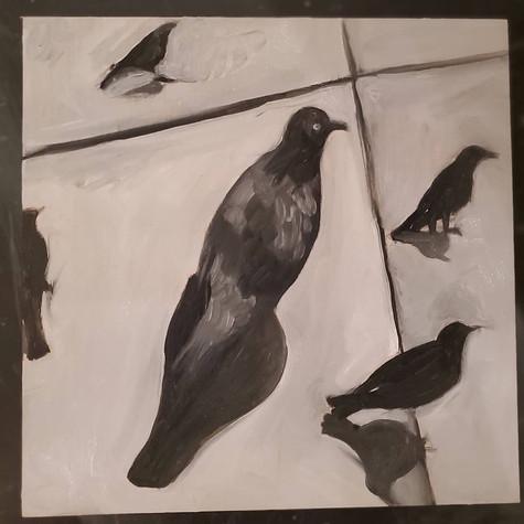 Birds 1