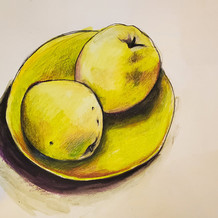 Quince drawing