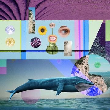 collages_Mesa de trabajo 1 copia 8.png