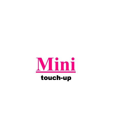 Mini (Click for details)