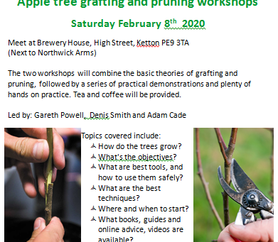Grafting and Pruning Workshop