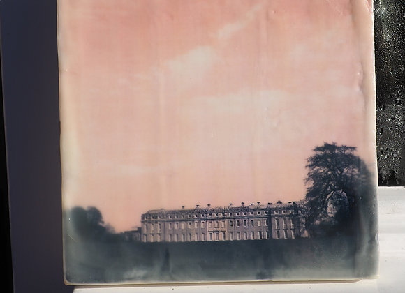 Petworth Park 2 - encaustic photography. Limited edition