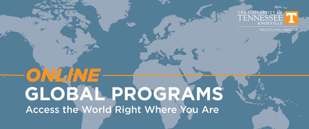 online global programs banner.png