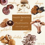 mushrooms-12.png