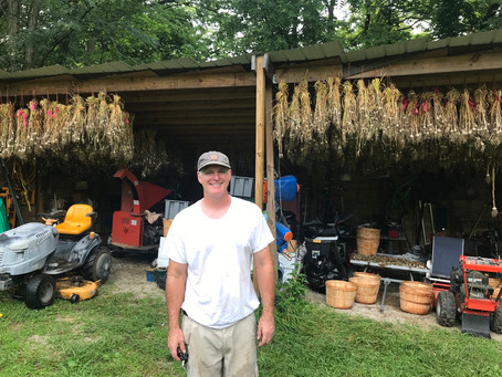 Drenched In A Very Humid Environment Hanging Garlic To Dry
