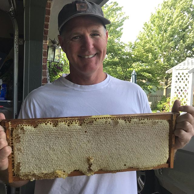 Nice frame of capped honey.