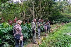 Costa Rica 2019  019.jpeg
