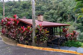 Costa Rica 2019  022.jpeg
