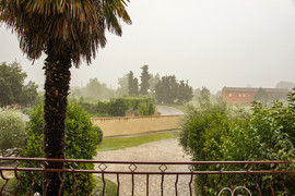 Provence 2011 034.jpeg