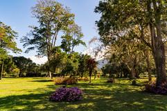 Costa Rica 2019  008.jpeg