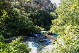 Provence 2008 039.jpeg